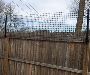 Fence Extension Kit