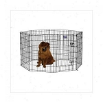 Dog Exercise Pen with Walk-thru Door