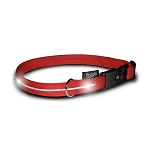 Red Nylon Collar with White LED